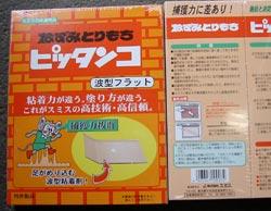 20051011pi.jpg