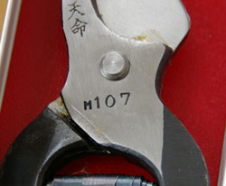 20090218tenmei2