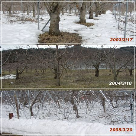 2003-5snow